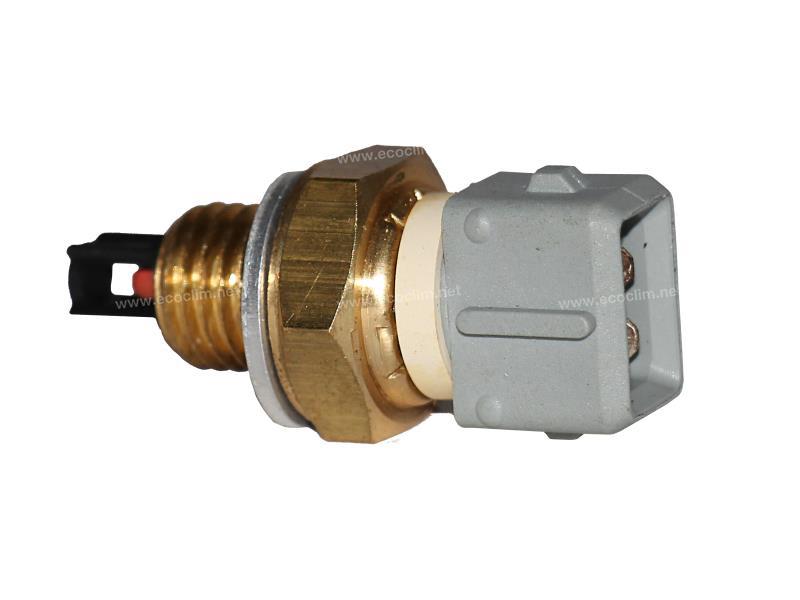 Thermostat Sonde