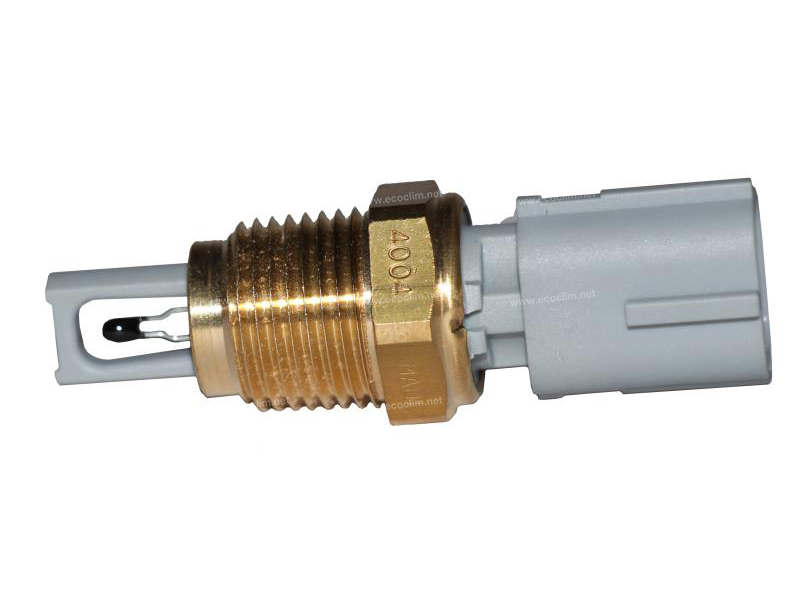 Thermostat Sonde